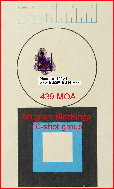55_grain_blitzkings_10_shot_group_at_100-1598299.jpg